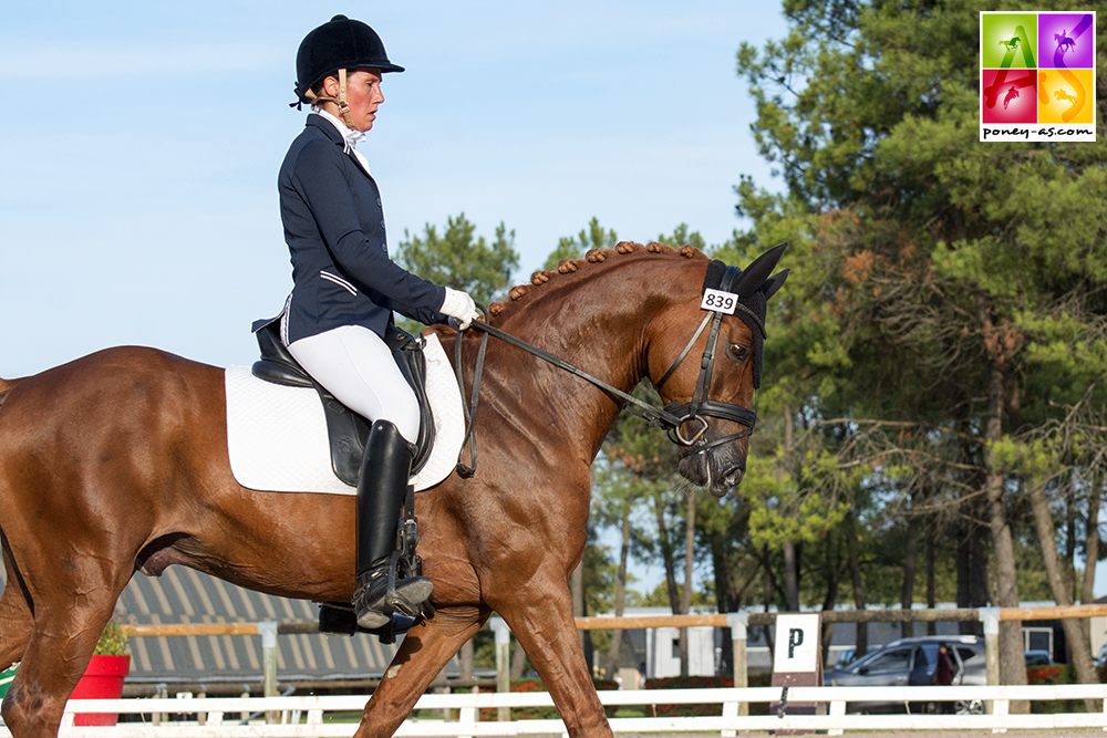 Beltmeyer Syndicat Linaro Dressage Poney