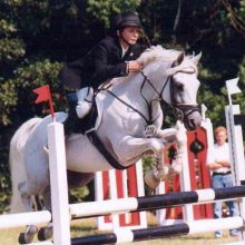 Glenn SL, étalon de sport poney